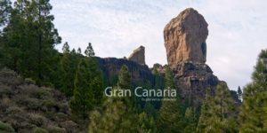 Gran Canaria - es gibt viel zu entdecken