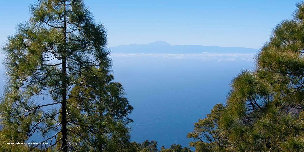 Blick vom Pinar de Tamadaba nach Teneriffa