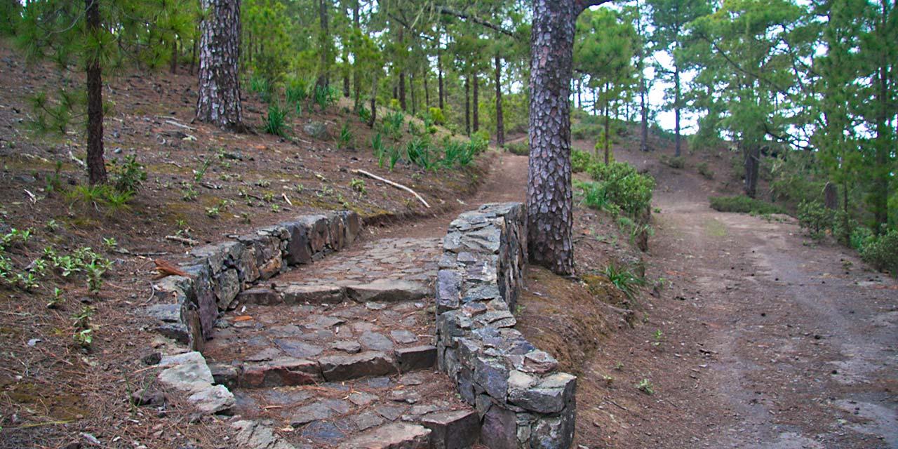 Wanderwege im Pinar de Tamadaba