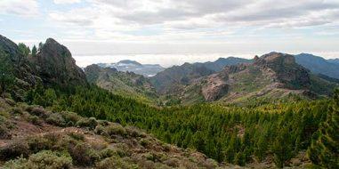 Artikel Empfehlung Gran Canaria